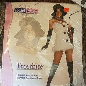 Secret Wishes Frostbite Costume.